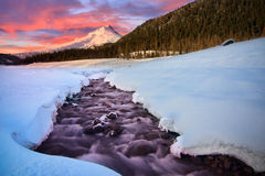 Vista of Mt. Hood by the White River Royalty Free Stock Photography