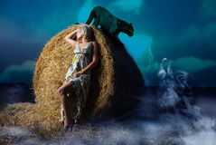 Vista Mystical del campo di notte Fotografia Stock