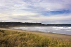 Vista na baía da baía no Catlins, Nova Zelândia do objeto antigo, ilha sul, foto de stock