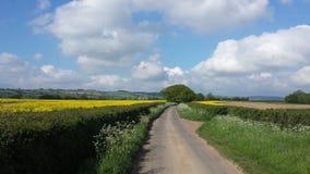 Vista na estrada secundária e nos campos em Inglaterra foto de stock
