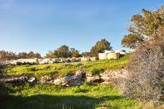 Vista na paisagem b?blica verde e nas ru?nas arqueol?gicos Beit Guvrin Maresha durante o tempo de inverno, Israel imagem de stock royalty free