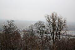 Vista na ponte do rio do monte do parque no outono foto de stock royalty free