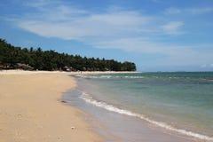 A vista na praia da areia com mar azul e nas palmas em um fundo em um dia ensolarado Fotografia de Stock Royalty Free