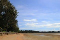 A vista na praia da areia com palmas e traços de caranguejos em um dia ensolarado Imagem de Stock Royalty Free