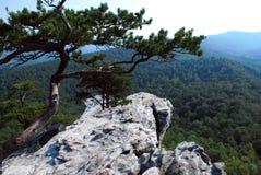 Vista na rocha de suspensão foto de stock