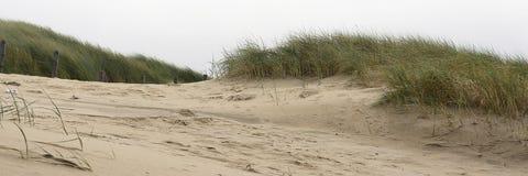 Vista nas dunas e no estorno na área costal na costa oeste dos Países Baixos imagens de stock