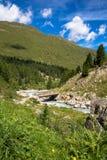 Vista nas montanhas Imagens de Stock