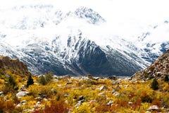 Vista nas montanhas, Tibet, China fotografia de stock royalty free