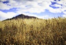 Vista naturale scenica Fotografia Stock Libera da Diritti