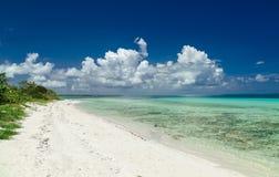 Vista naturale stupefacente del paesaggio della spiaggia cubana contro cielo blu profondo e tranquillo d'invito, oceano del turch Fotografia Stock Libera da Diritti