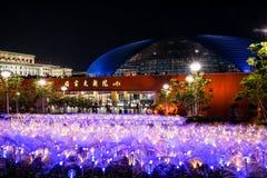 Vista nazionale di notte del grande teatro della Cina Immagine Stock Libera da Diritti