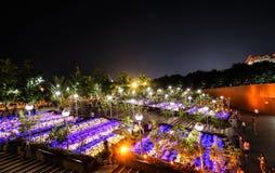Vista nazionale di notte del grande teatro della Cina Fotografia Stock Libera da Diritti