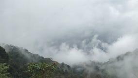 Vista nebbiosa in altopiani immagine stock