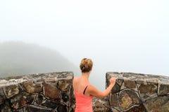 Vista nebbiosa della giungla Fotografie Stock Libere da Diritti