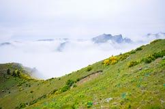 Vista nebbiosa in montagne, Madera, Portogallo Fotografie Stock