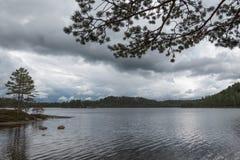 Vista nel lago della foresta immagine stock libera da diritti