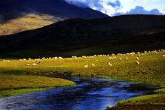 Vista nel Tibet Fotografia Stock