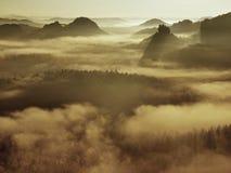 Vista nella valle nebbiosa profonda in Saxon Svizzera. I picchi dell'arenaria aumentati da fondo nebbioso, la nebbia è arancia blu Fotografie Stock Libere da Diritti