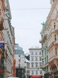 Vista nevado de Viena, Áustria foto de stock royalty free