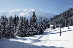 Vista nevado em montanhas de Tatra Foto de Stock
