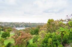 Vista no alastro suburbano do parque fotografia de stock royalty free