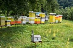 Vista no apiário e no jardim do monastério do moraca foto de stock royalty free