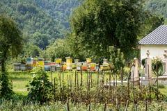 Vista no apiário e no jardim do monastério do moraca fotos de stock royalty free