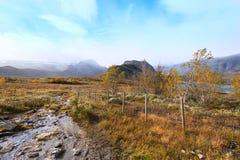 Vista no córrego da montanha em Noruega Fotografia de Stock Royalty Free