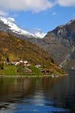 Vista no fjord norueguês Imagem de Stock