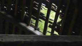 Vista no furo no telhado de madeira da casa abandonada na vila de Bielorrússia vídeos de arquivo