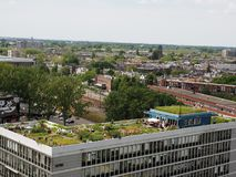 Vista no jardim De Dakakker do telhado em Rotterdam imagem de stock