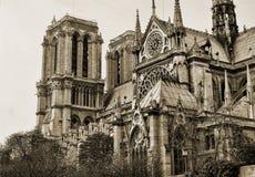 Vista no lado de Notre Dame no sepia imagens de stock