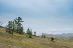 Vista no Lago Baikal sobre um estepe rochoso com árvores de larício imagens de stock