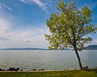 Vista no lago Balaton, Hungria Imagem de Stock Royalty Free