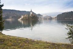 Vista no lago sangrado Imagem de Stock