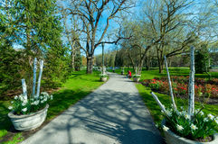 Vista no parque na cidade de Niagara Falls Foto de Stock Royalty Free