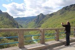 Vista no rio de Tara da vista ‡ a Tara Bridge do eviÄ no urÄ do  de Ä ', uma das pontes as mais bonitas no mundo fotografia de stock