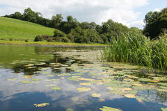 Vista no rio Erne Fotos de Stock
