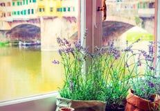 Vista no River Arno Fotos de Stock Royalty Free