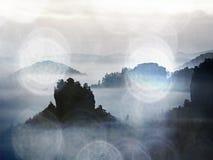 Vista no vale enevoado As árvores altas e os picos rochosos aumentaram da névoa grossa Os primeiros raios do sol criam o outlin Foto de Stock Royalty Free