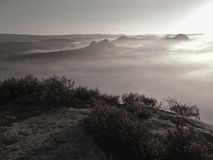 Vista no vale enevoado profundo sobre topetes da urze Os picos do monte aumentados do outono onde o campo nevoento grita, a névoa Foto de Stock
