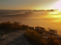 Vista no vale enevoado profundo sobre topetes da urze Os picos do monte aumentados do outono onde o campo nevoento grita, a névoa Imagens de Stock