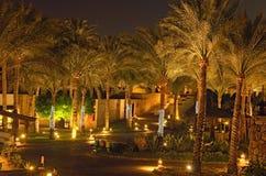 Vista nocturna escénica del área del hotel con las palmeras y las iluminaciones Jeque del EL de Sharm, Egipto Concepto de las vac imágenes de archivo libres de regalías
