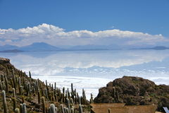 Vista nos saltflats de salar de uyuni da ilha do ` s do pescador em Bolívia Imagem de Stock Royalty Free
