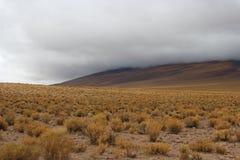 Vista nuvolosa del deserto di Atacama immagine stock