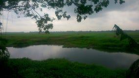 Vista nuvolosa verde Fotografia Stock