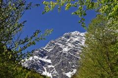 Vista orientale del fronte della montagna di Watzmann Fotografia Stock Libera da Diritti