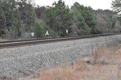 A vista original de trilhas do trem com fluxo remove ervas daninhas ao lado dela Fotografia de Stock Royalty Free