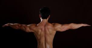 Vista orizzontale di una parte posteriore dell'uomo del muscolo Fotografia Stock Libera da Diritti