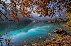 Vista outonal do lago Tovel, Val di Non dentro do parque natural de Adamello-Brenta, Trentino Alto-Adige, Itália fotos de stock